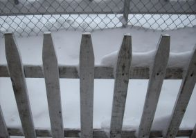 our white picket fence, love by sweetanimefreek