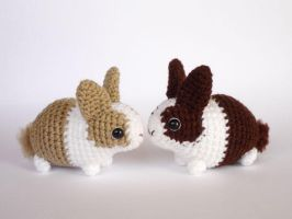 Baby Dutch bunnies by LunasCrafts