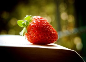 The first strawberry of the year by Alessia-Izzo