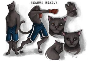 Seamus Meadly by Tanize