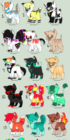 Large Adoptable Batch - PAYPAL ONLY - CHEAP ($1-3) by SpunkyRacoon