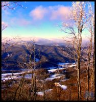 Roan Mountain, Tennessee 53 by XpiecemealX