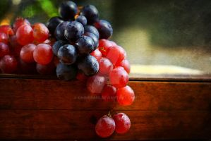 Two Grapes by Chimera55