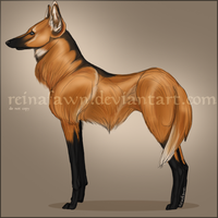 Maned Wolf by reinafawn