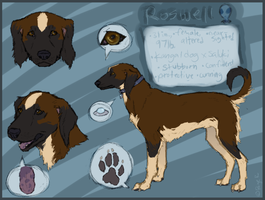 Refsheet: Roswell by Pagerda