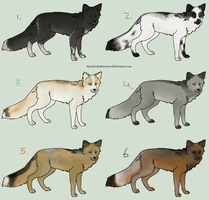 6 Inexpensive Fox Adoptables by Animal-Canine-Adopts