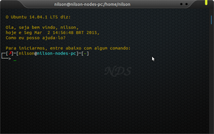 Terminal Colorido NDS V2015 by nodesnodes
