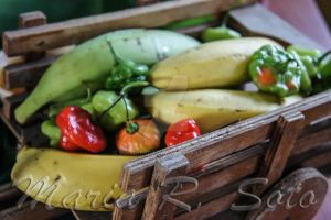 Vegetables on the Go by MariaRSoto