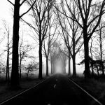 If I Be Wrong by augenweide