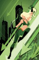 Robyn Hood cover, I Love NY by MikeMahle