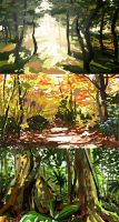 Forest colour studies by seandunkley