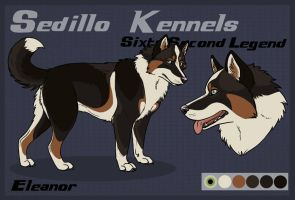 SK's Sixty Second Legend: Eleanor by Sedillo-Kennels