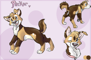Parker Ref by colonel-strawberry