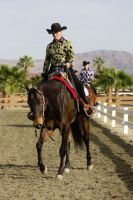 show horse lope by FineEquine