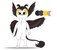 The Lost Feather - Feng (Reference Sheet) by SilverStarStrike