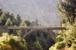 NZ Bridge in sunlight surrounded by nature by Chunga-Stock