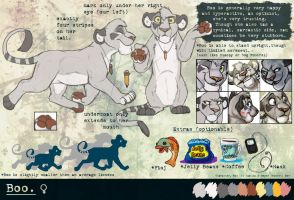 Boo Reference Sheet by BooYeh