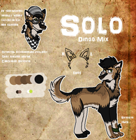 Solo 2013 by The-Solo-Hero