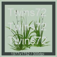 22-Twins72-Stocks by Twins72-Stocks