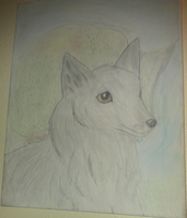 Wolf portrait by pungender