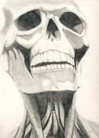 Skull by simonsays00