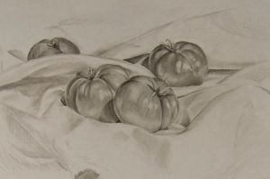 Tomatos Still Life by NateTheKnife