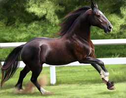 Friesian Mare Cross by Chicken-Priestess