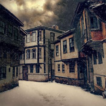 .: winter story :. by GokhanKaraag