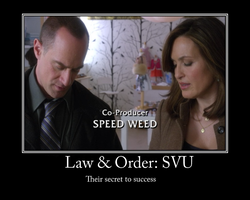 Law and order: svu by Temari25