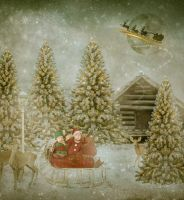 Christmas delivery by Fran-photo