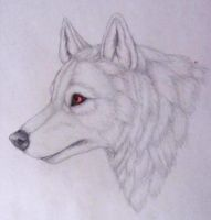 Ghost- A Game of Thrones by WinterWolf10