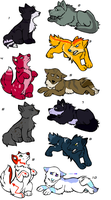 Canine Adopts by Altiadopts