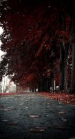 Fall .3 by paradax