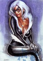 Black cat sketch card 39 by charles-hall