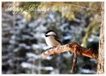 Happy Holidays Chickadee by Jenna-Rose