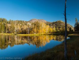 Tamarack Lake by MartinGollery