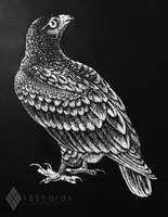Hawk Scratchboard by 16Shards
