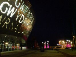 Wales Millenium Centre 12 by evilminky666