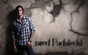 Jared Padalecki Wallpaper by Poetic-Beauty81