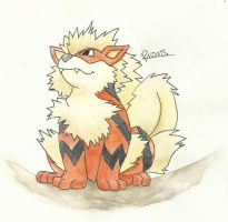 Kanto no. 059 Arcanine by Randomous