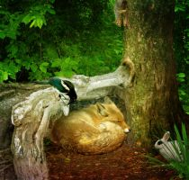 While the Fox Sleeps Away... by allison712