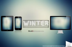 Winter-2013 by BlankID