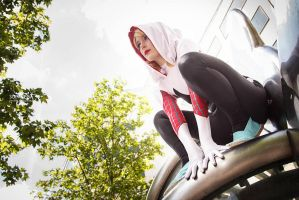 Cosplay Spider Gwen VII by ReaverSkill