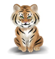 Little tiger by babi1508