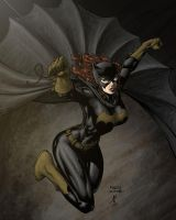 Batgirl colors by Niggaz4life