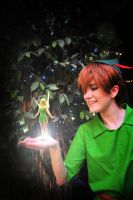 Peter Pan: Faith, Trust, and Pixie Dust by pansypixie