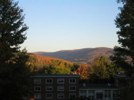 Autumn in Oneonta -1- by puresonicfury