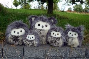 Fuzzy owls group picture by demiveemon