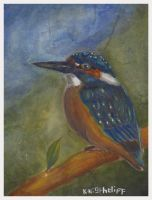 random practice 16 (acrylic) - KINGFISHER by kuronightcliff2