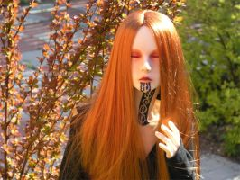 Ginger by Gilven